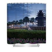 Sunrise Pineapple Fountain Shower Curtain
