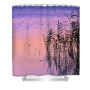 Sunrise Reeds Shower Curtain
