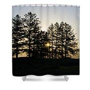 Sunrise Shines Through The Pines Shower Curtain