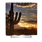 Sunrise Splendor  Shower Curtain