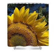 Sunrise Sunflower Shower Curtain