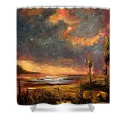 Sunrise With Birds  Shower Curtain