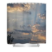 Suns Rays 3 Shower Curtain
