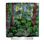 Suns Rays - Forest - Steel Engraving Shower Curtain