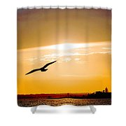Sunscaped Shower Curtain