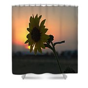 Sunset And Sunflower Shower Curtain