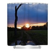 Sunset And The Dead Tree Shower Curtain