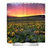 Sunset At Columbia Hills State Park Shower Curtain
