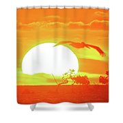 Sunset At Elizabeth Bay Shower Curtain