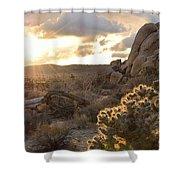 Sunset At Joshua Tree National Park Shower Curtain