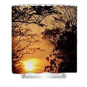 Sunset At Jungle Shower Curtain
