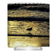 Sunset Bird Shower Curtain
