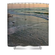 Sunset Bird Patrol Shower Curtain