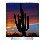 Sunset Cactus Shower Curtain