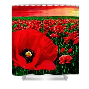 Sunset California Poppy Preserve Shower Curtain