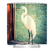 Sunset Dock Visitor Shower Curtain