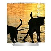 Sunset Dogs  Shower Curtain