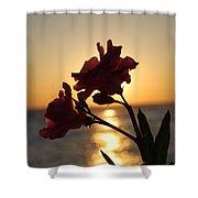 Sunset Flower 2 Shower Curtain