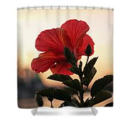 Sunset Flower Shower Curtain