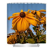 Sunset Flowers Shower Curtain