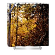 Sunset Forest Shower Curtain