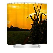 Sunset In The Cornfield Shower Curtain