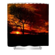 Sunset In The Field Shower Curtain