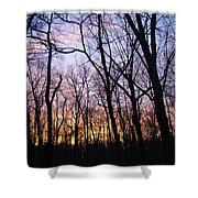 Sunset In The Forest Shower Curtain