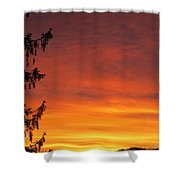 Sunset Of Life  Shower Curtain