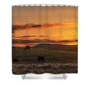 Sunset On Open Range Shower Curtain