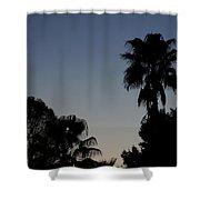 Sunset Palm Shower Curtain