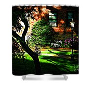 Sunset Sentinels Shower Curtain