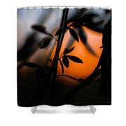 Sunset Silhouette 2 Shower Curtain