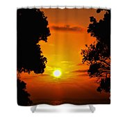 Sunset Silhouette By Diana Sainz Shower Curtain