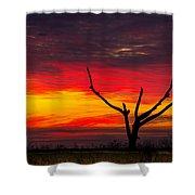 Sunset Solitude Shower Curtain