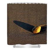 Sunset Stone Shower Curtain