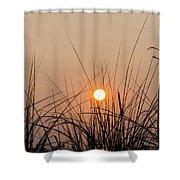 Sunset Through The Grass - Villas New Jersey Shower Curtain by Bill Cannon