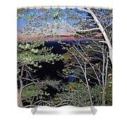 Sunset Thru The Pines Shower Curtain