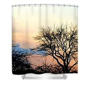 Sunset Tree Silhouettes Shower Curtain