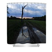 Sunset Treeflection Shower Curtain