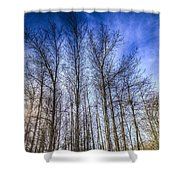 Sunset Trees Shower Curtain