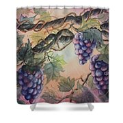 Sunset Vineyard Shower Curtain