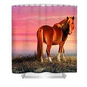 Sunset Wild Shower Curtain