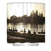 Sunset With Geese On The Thames Shower Curtain