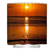 Sunset With The Birds Photo Shower Curtain