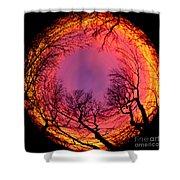 Sunset World Of Trees Shower Curtain