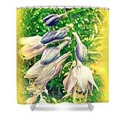 Sunshine And Flowers Shower Curtain