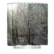 Sunshine And Snow Shower Curtain