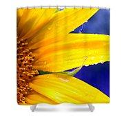Sunshine Blue Shower Curtain