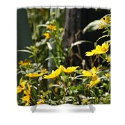 Sunshine Flowers 2 Shower Curtain
